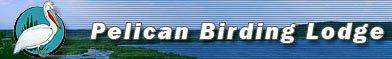 Pelican Birding Lodge